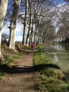 canal du midi towpath in winter time